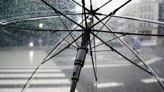 В понедельник начался старт потепления в Петербурге