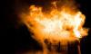 В Тосненском районе два человека заживо сгорели во время пожара