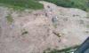 В Петербурге в грязевом болоте у КАД застряли автомобили