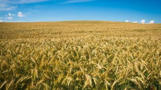Первомайское сельского поселение награждено за развитие сельских территорий