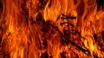 В Колпино ночью тушили пожар в трехкомнатной квартире
