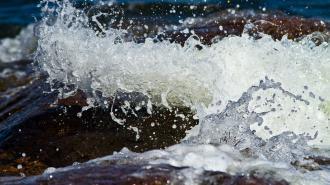 На берегу финского залива нашли труп мужчина в калошах