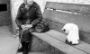 В Петербурге банда снегурочек-мошенниц цинично обворовывает одиноких стариков