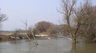 Тела сотрудников суда, пропавших в Красноярском крае, найдены в реке