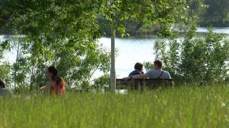 Теплый день без дождей ожидается в Петербурге 18 августа