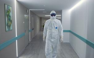 Число ежедневных коронавирусных госпитализаций в Петербурге снизилось на 6 процентов