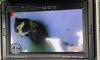 """""""Кошкинспас"""" достал из вентиляции застрявшего котенка: животное четыре этажа поднимали на веревке"""