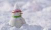 В Петербурге утилизировали миллионный куб снега