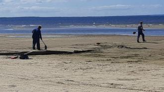 Специалисты привели в порядок пляж в Сосновом Бору