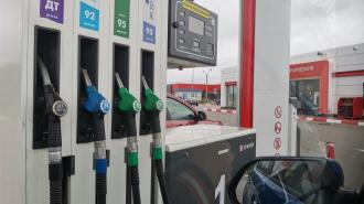 В России многодетным семьям могут начать выдавать бесплатный бензин