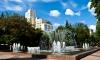 В Воронеже правозащитника избили и облили зеленкой