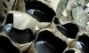 Канадцы сетуют на качество битума в России