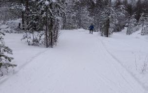 Где покататься на лыжах в Петербурге