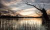 Комитет по природопользованию проверит состояние Суздальских озер