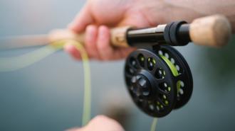 В Ленобласти рыбаки незаконно выловили миногу на 500 тысяч рублей