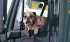 Депутаты хотят запретить эвакуацию машин с людьми или животными внутри