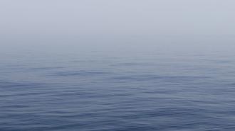 Под Волгоградом 3-летнего мальчика нашли утонувшим в Волге