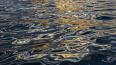 Петербургскую дамбу закрыли из-за подъема уровня воды