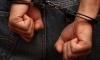 В Пензенской области поймали серийного убийцу-каннибала