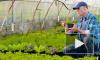 Владимир Путин подписал закон о патентах для фермеров