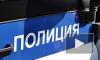 Арестована петербурженка, грозившаяся взорвать отдел полиции и главк
