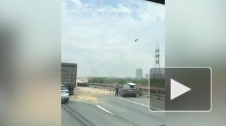 """На после """"тройного"""" ДТП на КАД по дороге рассыпали зерно"""