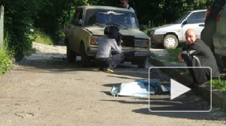 Прохожие устроили самосуд над пьяным водителем, насмерть сбившим девочку