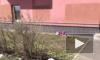 Пенсионерка из Петербурга разбилась насмерть, выпав из окна на 3 этаже