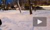На Софийской улице прорвало трубу с кипятком