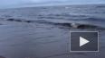 На Ладожском озере и Финском заливе снова штормит