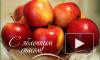 Яблочный Спас 2016 года: дата, приметы, обычаи, поздравления в стихах