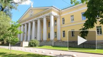 Как Мариинская больница возвращается к плановой работе после COVID-19