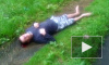 Парень выжил после падения из окна дома на проспекте Большевиков