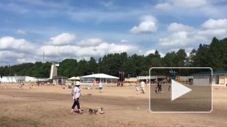 Роспотребнадзор признал пригодным для купания только двапляжав Петербурге