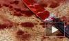 В Кузбассе пьяная девочка-подросток ударила ножом в спину своего знакомого мальчика