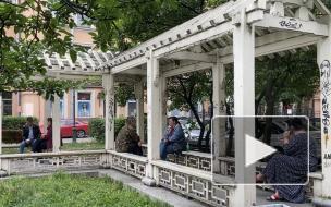 Жители Литейного округа переживают за беседку в сквере Дружбы
