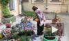 Цветочный рай во дворе дома 22 по 9-ой Советской собираются уничтожить