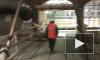 Станцию метро «Международная» планируют открыть в августе 2012-го
