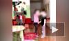 Воспитательница российского приюта стравливала детей ради видео в Instagram