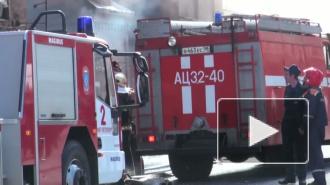 Пожар на Розенштейна, 8 уничтожил два этажа Института технологии и дизайна
