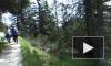 Германия русскie _ предигштуль горы в г. бад райхенхаль 4 - YouTube