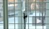 Трехлетний ребенок, выпавший из окна на Московском проспекте, умер в больнице: его родственников могут осудить