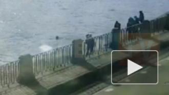 Момент спасения мужчины из Фонтанки попал на видео