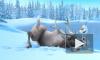"""Мультфильм """"Холодное сердце"""" (2013) от студии Walt Disney Pictures взял рубеж в 1 млрд рублей"""