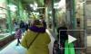 Многодетные семьи смогут бесплатно ходить в Ленинградский зоопарк