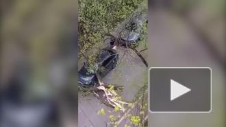 Службы спасения Москвы призвали граждан оставаться дома во время урагана