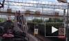 Ловких зацеперов сняли с хвоста электрички на станции Бернгардовка