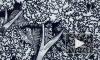 """Семья Боба Марливыпустила анимированный клип """"Redemption Song"""" к75-летию музыканта"""