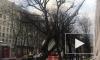 Ветер повалил строительные леса на Красного курсанта: видео