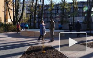 На Васильевском острове откроется новое общественное пространство